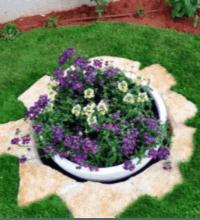 הקמת גינה פרטית וביצוע דשא סינטטי